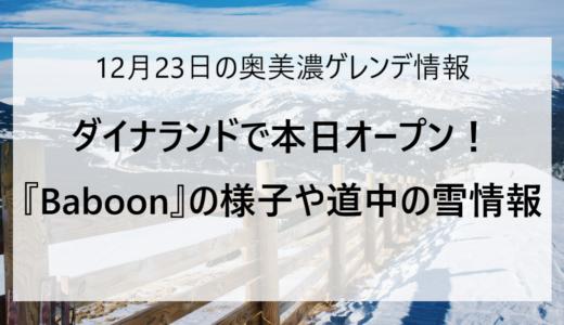 【12/23更新】奥美濃エリアのスキー場ゲレンデ情報