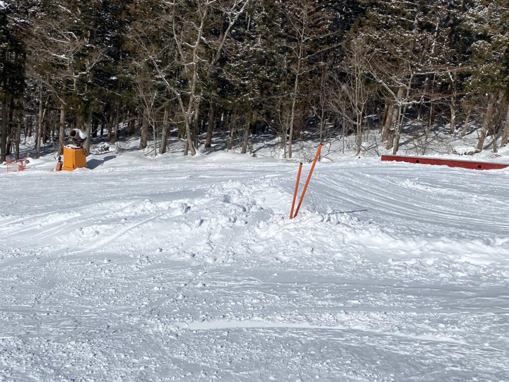 鷲ヶ岳スキー場画像5