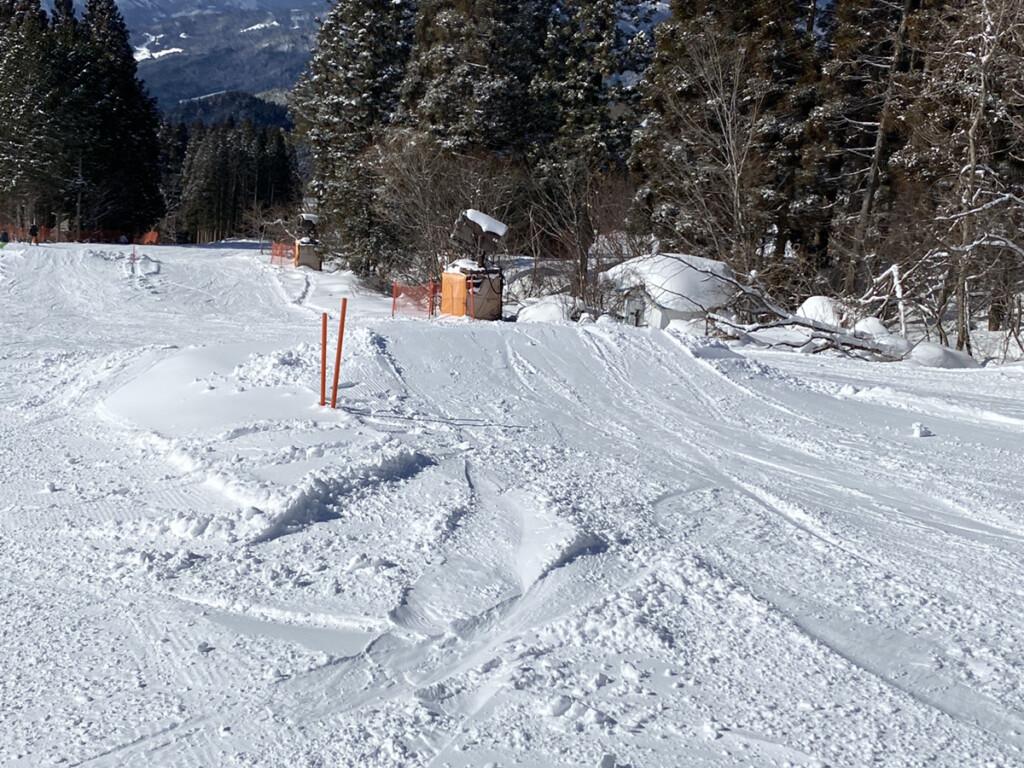 鷲ヶ岳スキー場画像16