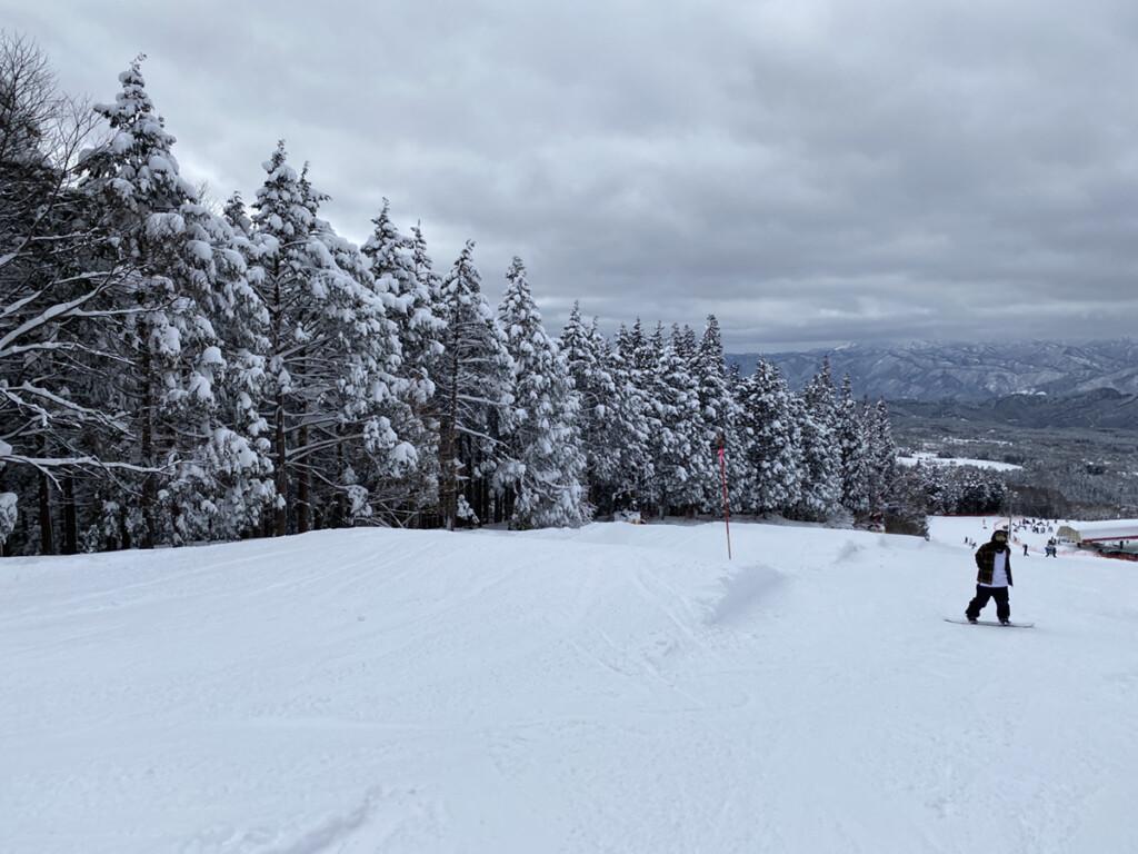 鷲ヶ岳スキー場画像6