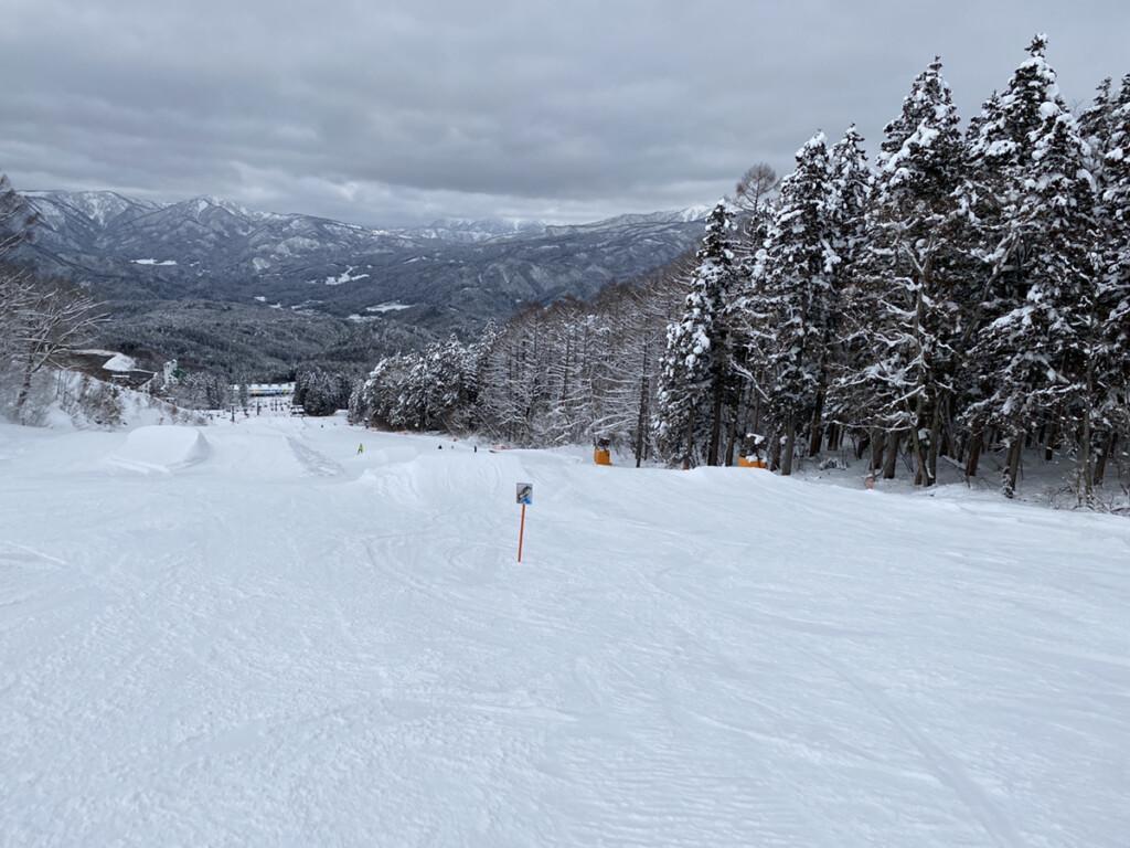 鷲ヶ岳スキー場画像9