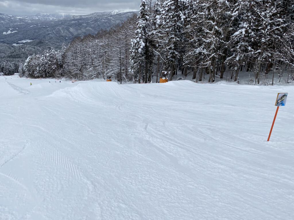 鷲ヶ岳スキー場画像12